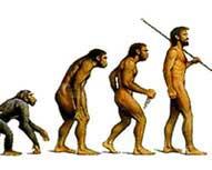 Скачать Столичный админсуд постановил, что человек   потомок обезьяны